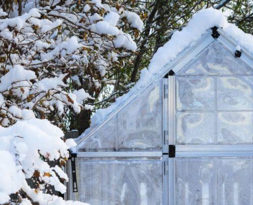 4 ting du kan gøre i haven om vinteren