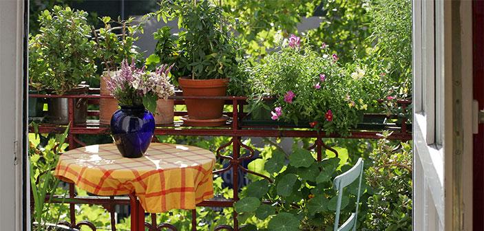 hyggelig altan med mange blomster