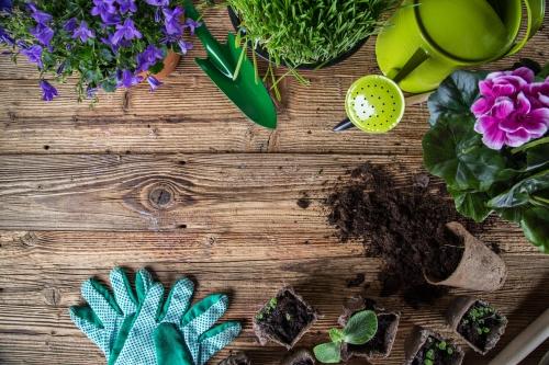 Brug grønne redskaber i haven